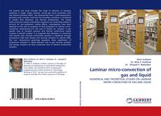 Bookcover of Laminar micro-convection of gas and liquid