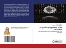 Borítókép a  Magnetic properties of Fe nanowire - hoz