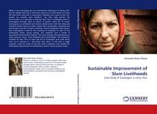 Buchcover von Sustainable Improvement of Slum Livelihoods