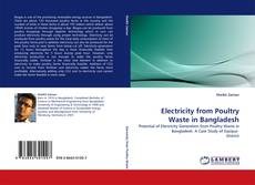 Bookcover of Electricity from Poultry Waste in Bangladesh