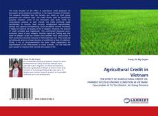 Bookcover of Agricultural Credit in Vietnam