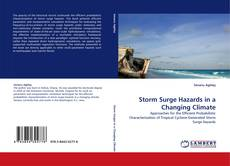 Bookcover of Storm Surge Hazards in a Changing Climate