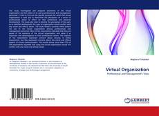 Bookcover of Virtual Organization