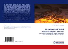 Bookcover of Monetary Policy and Macroeconomic Shocks: