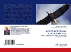 Bookcover of REVIEW OF INTERNAL CONTROL SYSTEMS