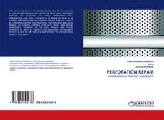 Bookcover of PERFORATION REPAIR