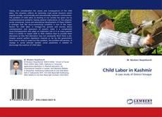 Bookcover of Child Labor in Kashmir