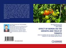 Bookcover of EFFECT OF BORON ON THE GROWTH AND YIELD OF TOMATO