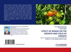 Portada del libro de EFFECT OF BORON ON THE GROWTH AND YIELD OF TOMATO
