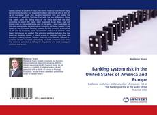 Bookcover of Banking system risk in the United States of America and Europe