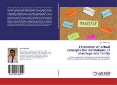 Portada del libro de Formation of actual concepts the institutions of marriage and family
