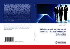 Buchcover von Efficiency and Social Capital in Micro, Small and Medium Enterprises
