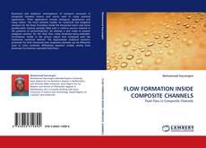 Bookcover of FLOW FORMATION INSIDE COMPOSITE CHANNELS
