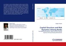 Bookcover of Capital Structure and Risk Dynamics Among Banks