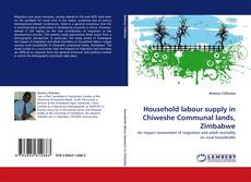 Bookcover of Household labour supply in Chiweshe Communal lands, Zimbabwe