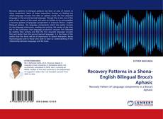 Обложка Recovery Patterns in a Shona- English Bilingual Broca's Aphasic