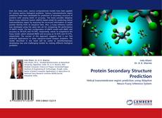 Couverture de Protein Secondary Structure Prediction