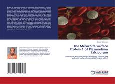Bookcover of The Merozoite Surface Protein 1 of Plasmodium falcipurum