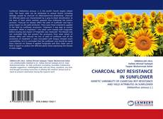 Bookcover of CHARCOAL ROT RESISTANCE IN SUNFLOWER