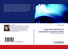 Couverture de Long time behavior of convection in porous media