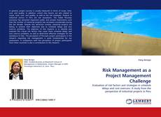 Bookcover of Risk Management as a Project Management Challenge