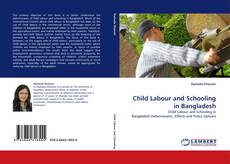 Bookcover of Child Labour and Schooling in Bangladesh
