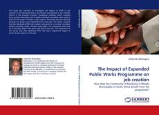 Bookcover of The Impact of Expanded Public Works Programme on job creation