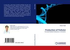 Borítókép a  Production of Pullulan - hoz