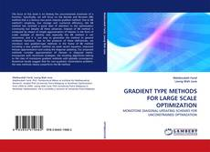 Bookcover of GRADIENT TYPE METHODS FOR LARGE SCALE OPTIMIZATION
