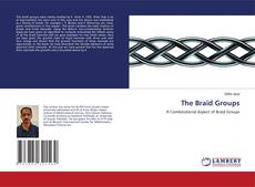 Bookcover of The Braid Groups