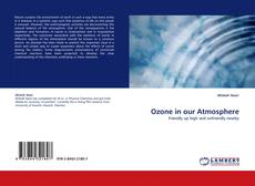Copertina di Ozone in our Atmosphere