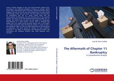Bookcover of The Aftermath of Chapter 11 Bankruptcy