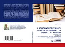 Bookcover of A SOCIOLINGUISTIC SURVEY OF PASHTU COMMUNITY IN PRESENT DAY KASHMIR
