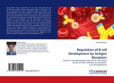 Couverture de Regulation of B cell Development by Antigen Receptors