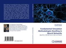 Bookcover of Fundamental Simulation Methodologies Dwelling in Neural Networks