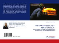 Natural Convection Inside Porous Enclosures kitap kapağı