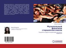 Bookcover of Музыкальный фанатизм старшеклассников