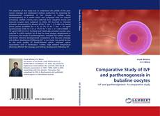 Bookcover of Comparative Study of IVF and parthenogenesis in bubaline oocytes