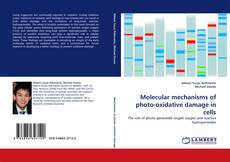 Bookcover of Molecular mechanisms of photo-oxidative damage in cells