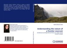Bookcover of Understanding the nature of a frontier reservoir