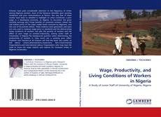 Couverture de Wage, Productivity, and Living Conditions of Workers in Nigeria