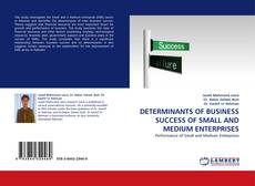 Bookcover of DETERMINANTS OF  BUSINESS SUCCESS OF SMALL AND MEDIUM ENTERPRISES