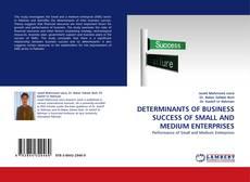 Buchcover von DETERMINANTS OF  BUSINESS SUCCESS OF SMALL AND MEDIUM ENTERPRISES