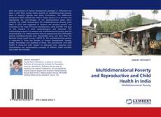 Buchcover von Multidimensional Poverty and Reproductive and Child Health in India