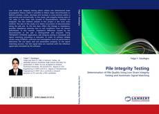 Capa do livro de Pile Integrity Testing