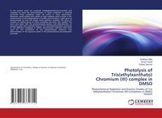 Borítókép a  Photolysis of Tris(ethylxanthato) Chromium  (III) complex in DMSO - hoz