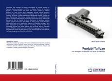 Punjabi Taliban kitap kapağı