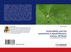 Bookcover of Vulnerability and risk assessment in Apodi-Mossoro estuary, NE Brazil