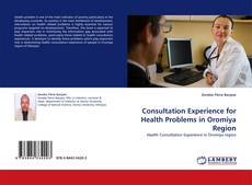 Bookcover of Consultation Experience for Health Problems in Oromiya Region