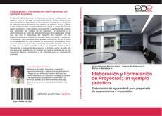 Bookcover of Elaboración y Formulación de Proyectos; un ejemplo práctico